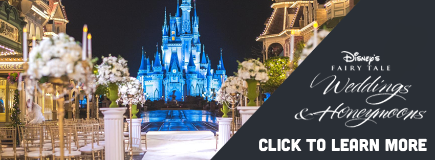 Learn More About Weddings at a Disney Destination